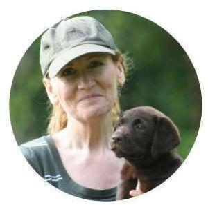 Online-Hundetrainingkurse